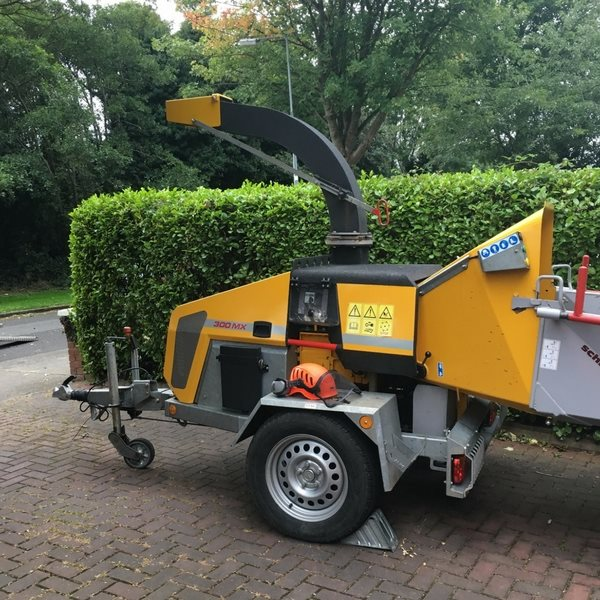 tree surgeon dublin. tree cutting dublin. hedge trimming dublin.