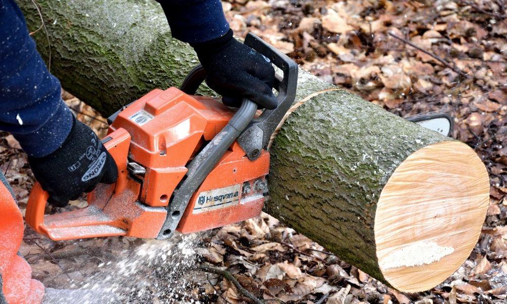 flannery's cutting dublin. tree removal dublin